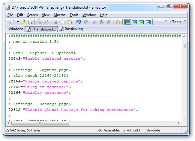 WinSnap - English Template File